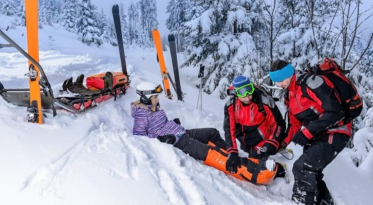 ביטוח לסקי