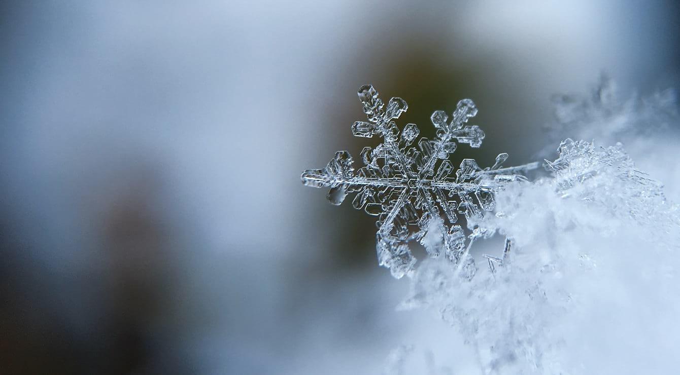 פתית שלג